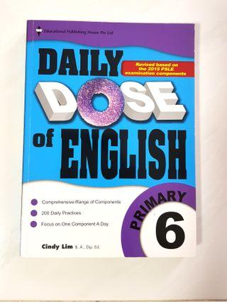 P6 Daily Dose English