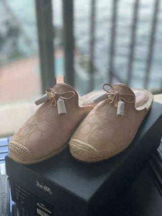 Coach 全新經典款帆布鞋 #MTRmk