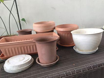 Pots and planters in different sized
