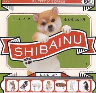 PUTITTO SHIBAINU 柴犬 杯緣子 扭蛋 擺飾 杯緣裝飾 4號白柴