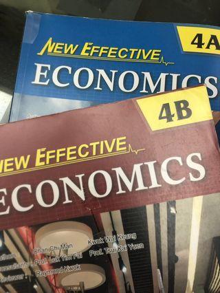 New effective economics Econ書 4A4B