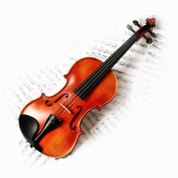 [演奏级]小提琴老師 violin teacher