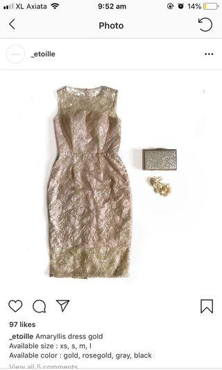 Etoille amaryllis gold dress pesta size M