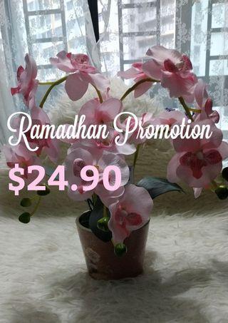 Ramadhan Promotion