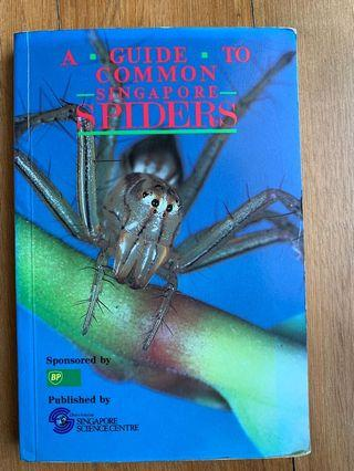 A Guide To Common Singapore Spiders