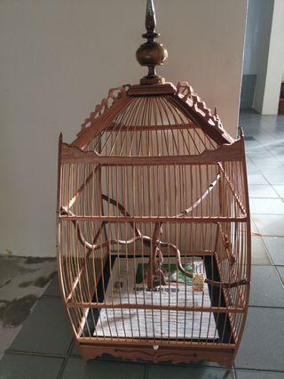 🚚 Jambul Cage