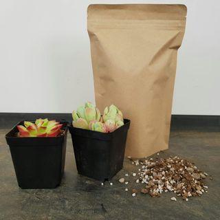 Succulent Soil Mix