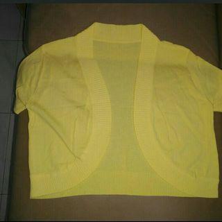 黃色小外套