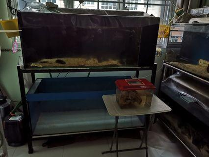3ft and 4ft Fish Tank with 2 tier Rack