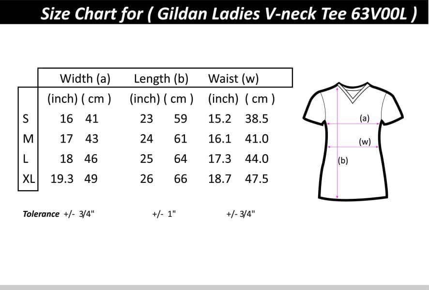 Gildan Softstyle 6300l V Neck For Women On Carousell