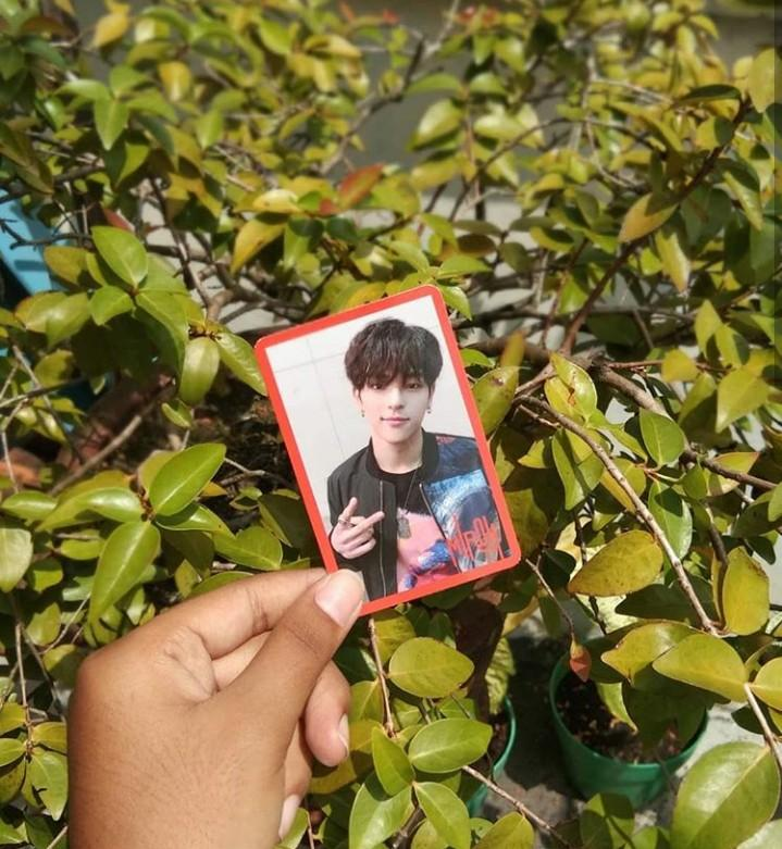 PC STRAY KIDS MIROH LIMITED VERSION