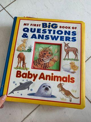 big book of animals buku belajar bahasa dan kata kata untuk anak anak