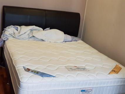 🚚 Princebed Queen Size Mattress