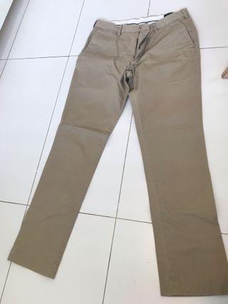 🚚 PoLo Pants