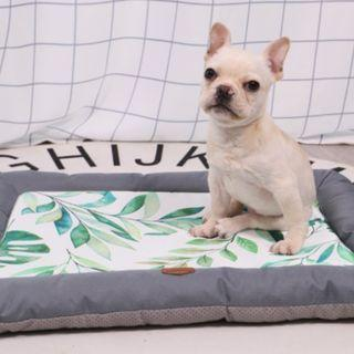 Waterproof Mat / Bed for Dogs / Cats / Pets