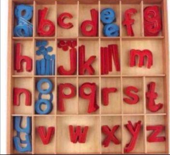 MOVABLE ALPHABETS MONTESSORI HOMESCHOOL PRESCHOOL WOODEN MOVEABLE ALPHABETS TODDLER BIRTHDAY GIFT