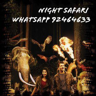Night Safari Night Safari Night Safari Night Safari Night Safari Night Safari Night Safari Night Safari Night Safari Night Safari Night Safari Night Safari Night Safari Night Safari Night Safari