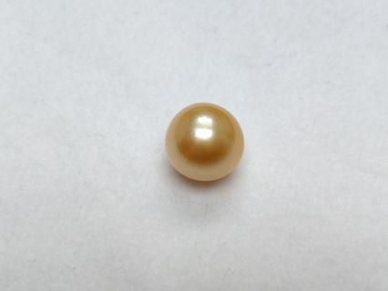 南洋金珠15-16mm