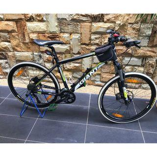 Giant Mountain Bike & Helmet 661
