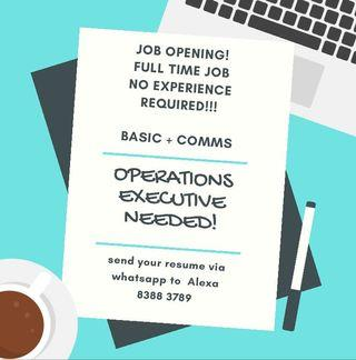 🚚 FULL TIME JOB OPS EXECUTIVE NEEDED