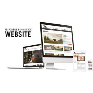 NEED A RESPONSIVE + ECOMMERCE WEBSITE