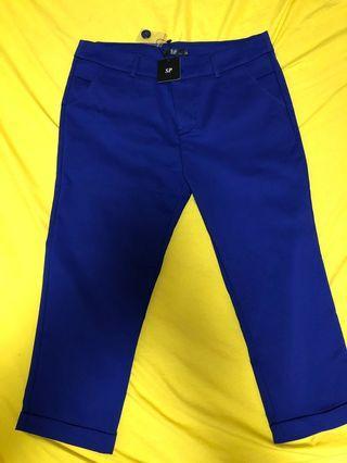 Bright Navy Blue Pant