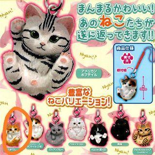 🚚 TOMY貓咪扭蛋吊飾 橘貓