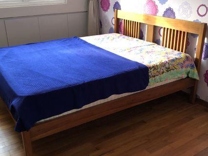 🚚 Scantek solid wood bedframe