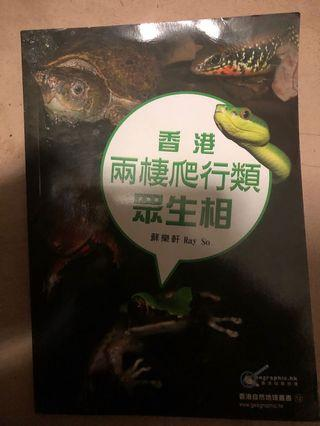 香港兩棲爬行類眾生相
