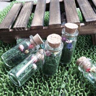 🚚 frozen flower in glass bottle