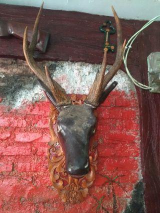 Kepala rusa