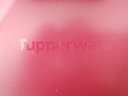 Smart Steamer_Tupperware
