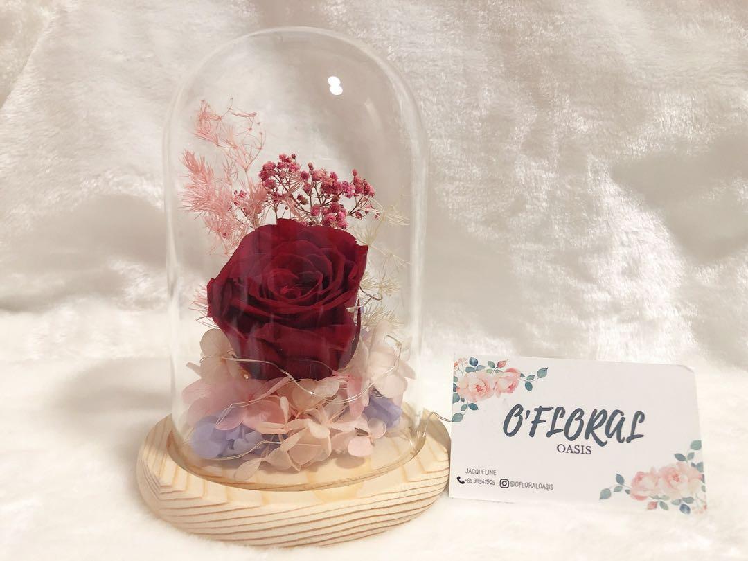 Red rose bell jar