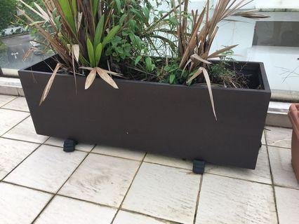 Two extra large sturdy planters: 38cm tall x 1.08m wide x 38cm deep (2 available)