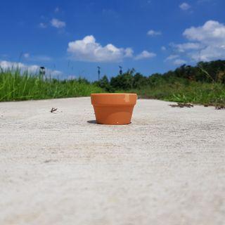🚚 3pcs of 7cmx4.5cm Terracotta Pots