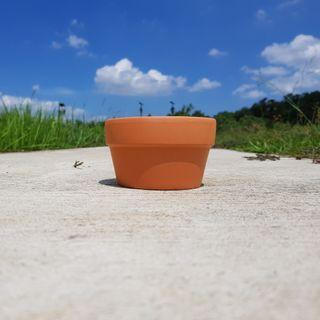 2pcs of 11cmx7cm Terracotta Pots