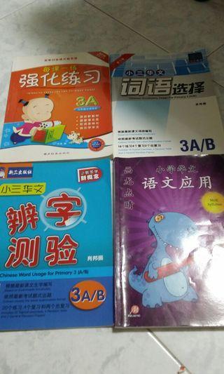 P3 Preloved Chinese Assessment Book 词语选择语文应用辨字测验