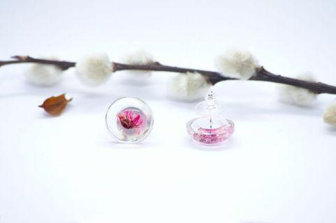 🚚 Dried flower ear studs