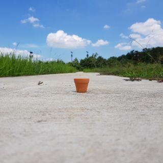 🚚 5pcs of 3cmx3cm Terracotta Pots