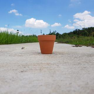 🚚 2pcs of 8cmx8cm terracotta pots