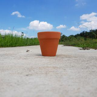 🚚 3pcs of 10cmx10cm terracotta pots