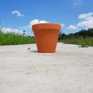 2pcs of 13cmx10cm terracotta pots