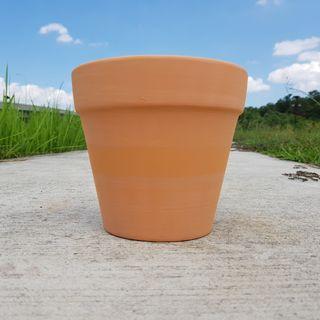 🚚 2pcs of 18cmx16cm terracotta pots