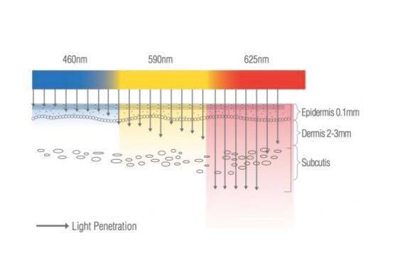 LIMITED EDITION OPTIMIZER VOYAGE TRI LIGHT++ ROSE GOLD