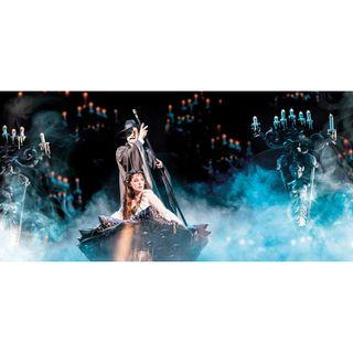 The Phantom of The Opera VIP Box 6 on 11/5 at 2 pm - 4 Tickets