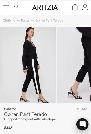 Aritzia Dress Pants