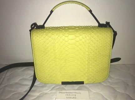 Emilio Pucci Leather trim neon python bag