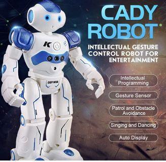🚚 遙控/手控機器人玩具/Cady Robot
