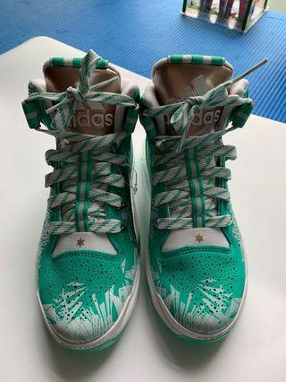 Brand New Adidas Basketball Shoes 籃球鞋