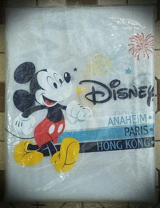 🚚 Disneyland Poncho